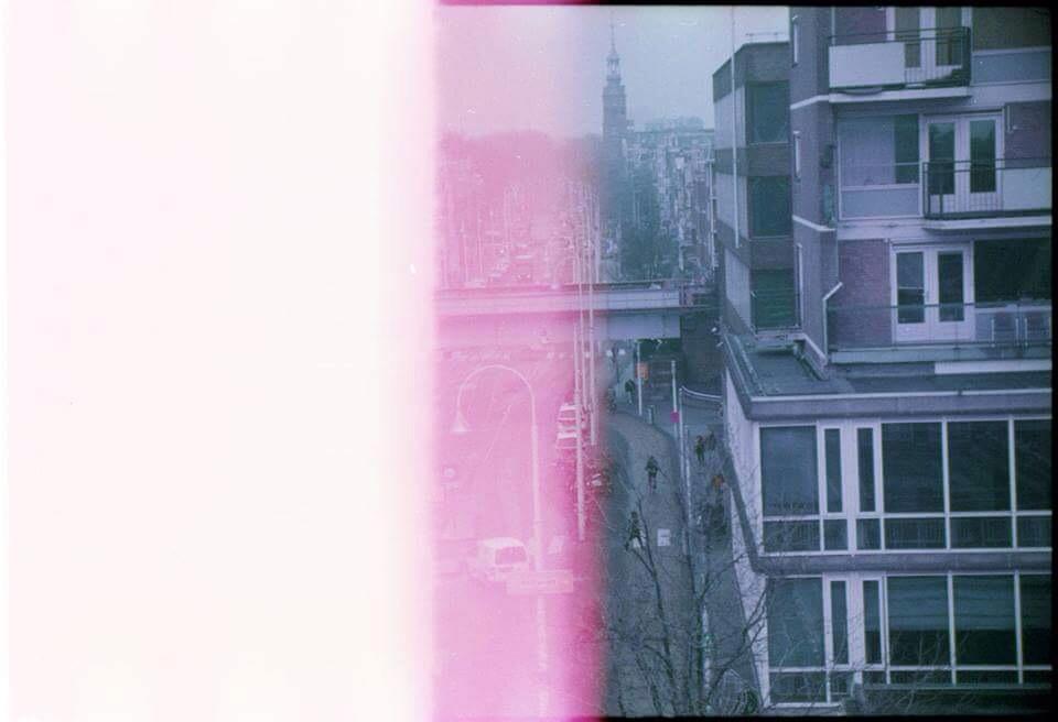 amsterdam violet.jpg