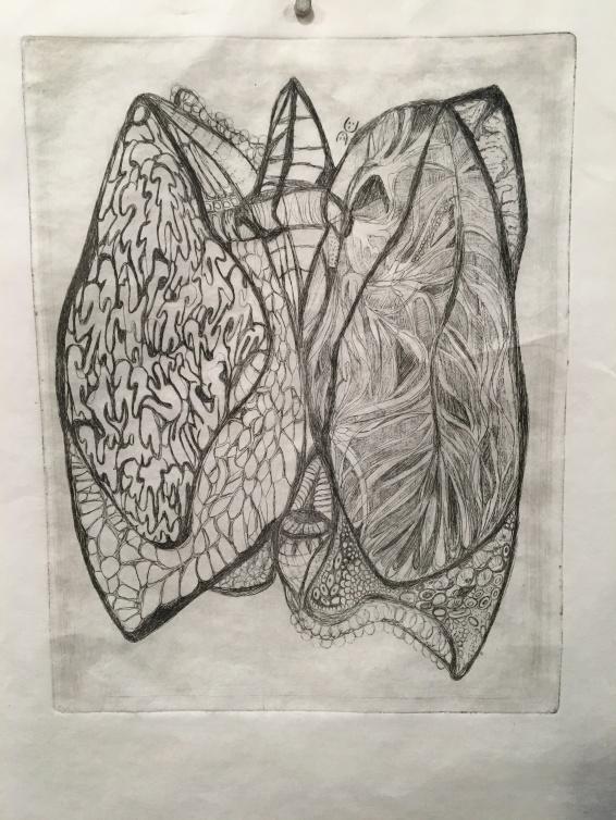 polmoni costanza chia