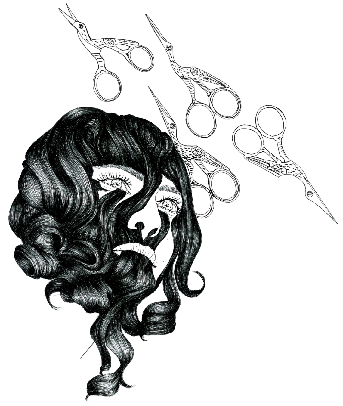 hair cut illustration